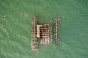 Design-Brighton