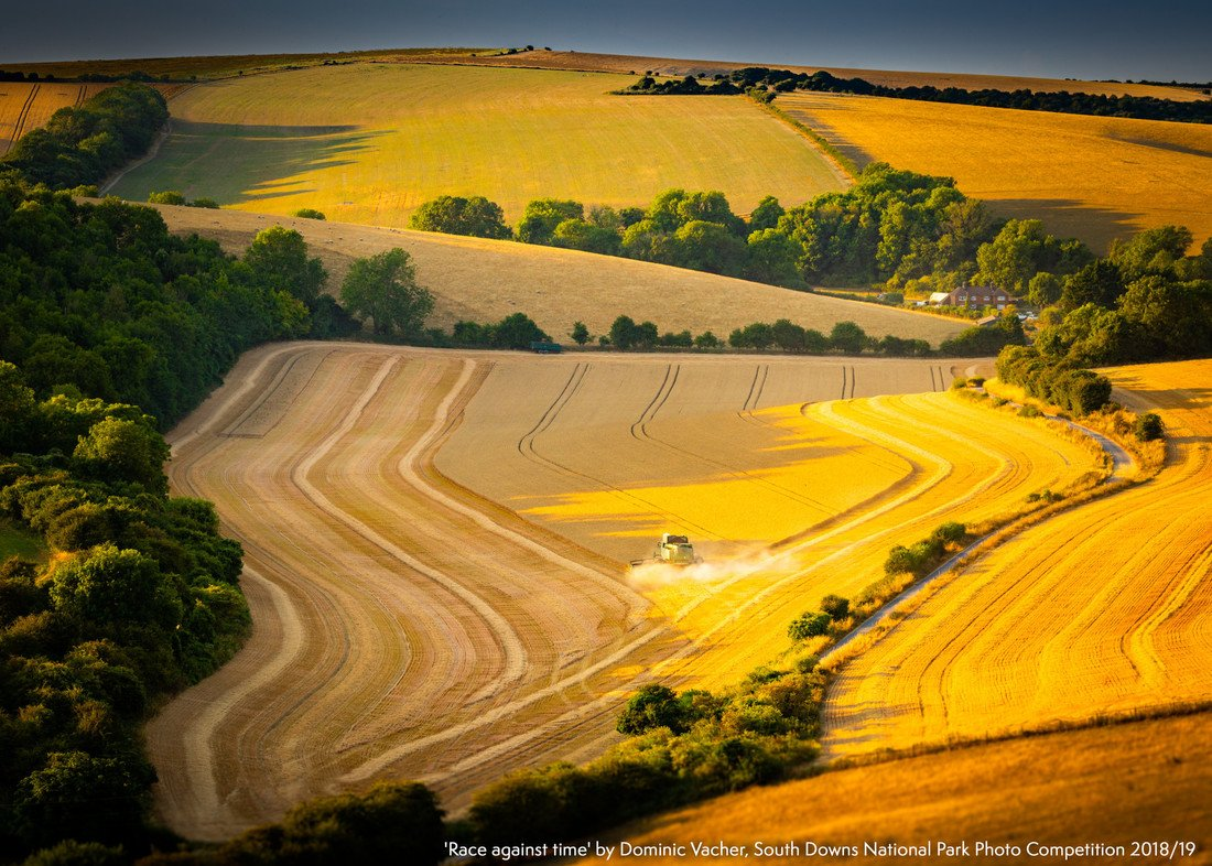 Race against time by Dominic Vacher South Downs National Park