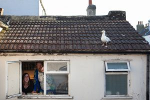 Gemma Taylor, a local documentary photographer, is looking for people who feed Brighton's Seagulls to take part in an art project