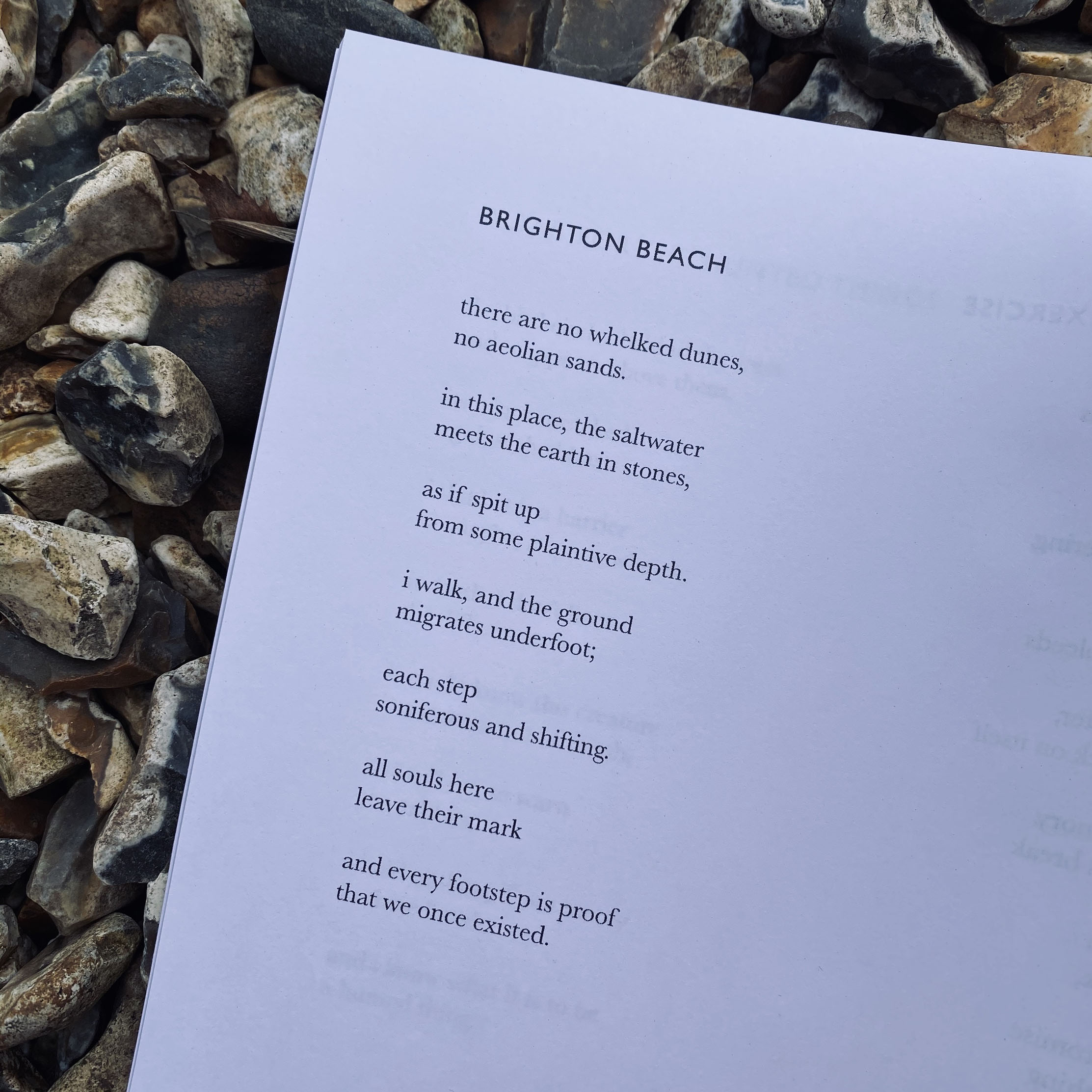Social poet, Blake Auden, shares exclusive composition about Brighton Beach with BN1
