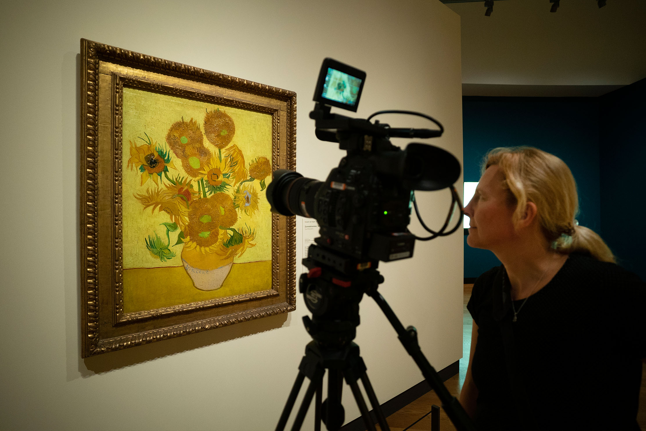 BN1 talks to Brighton-based film director David Bickerstaff, about SUNFLOWERS - his compelling new documentary about Van Gogh's masterworks